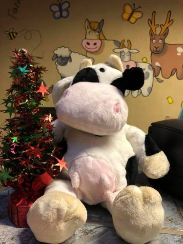 Farmer Palmers Cow is not just for Christmas, every child should play with one
